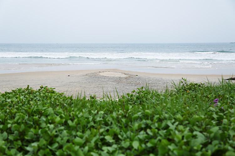 ヴァルカラビーチ