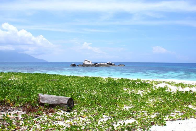 ティオマン島