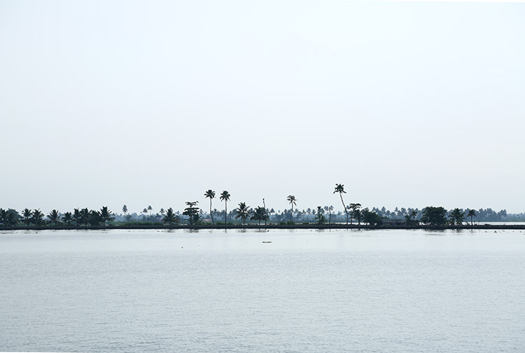 早朝の運河