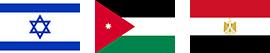 中東 国旗