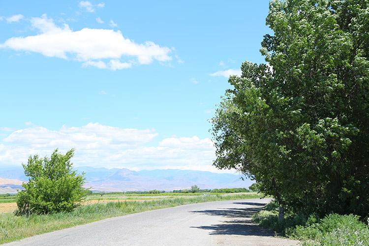 ホルヴィラップへの道