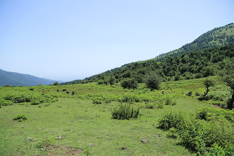 ラランディズ山