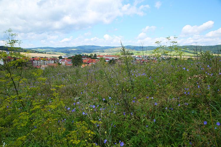 スピシュスケー村