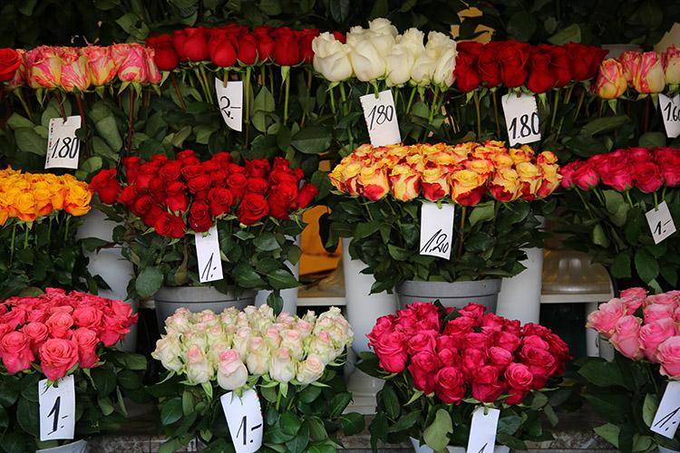 エストニア 花市場