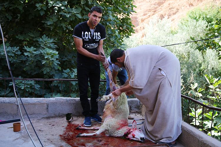 羊解体 犠牲祭