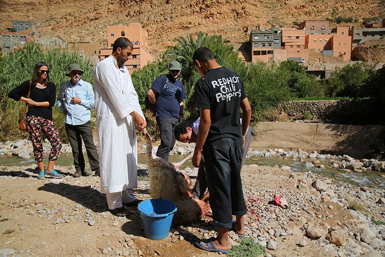 モロッコ 犠牲祭