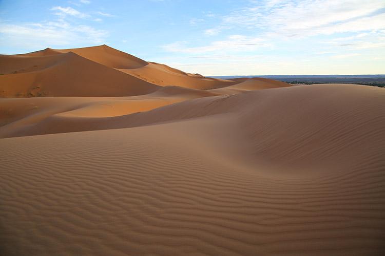 サハラ砂漠 風紋