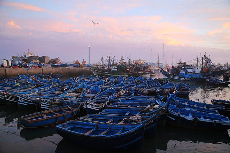 モロッコ エッサウィラ