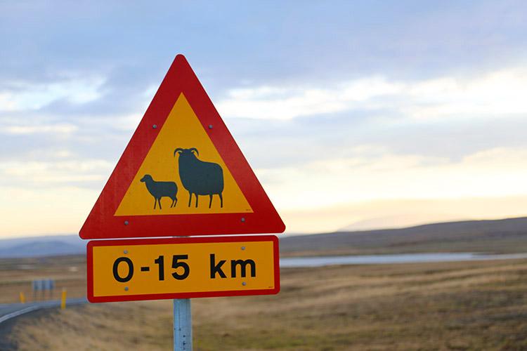 アイスランド 世界一周