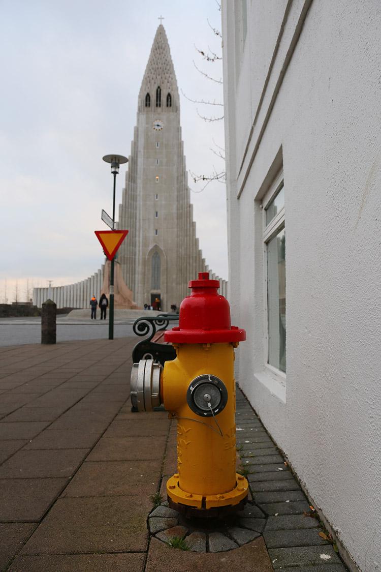 アイスランド 消化器