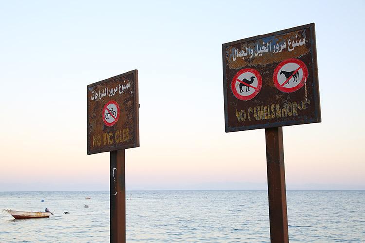 ダハブ エジプト 観光