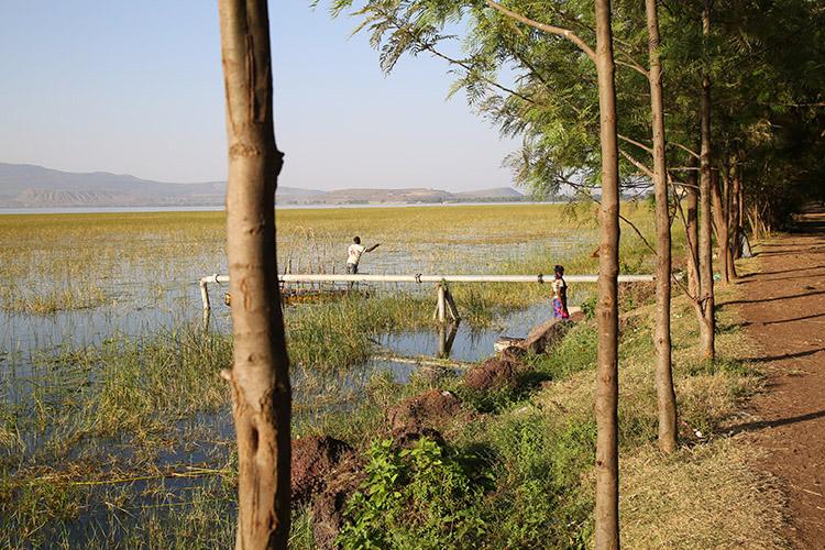 アワサ エチオピア