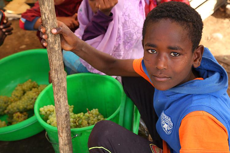 ダナキルツアー エチオピア マーケット