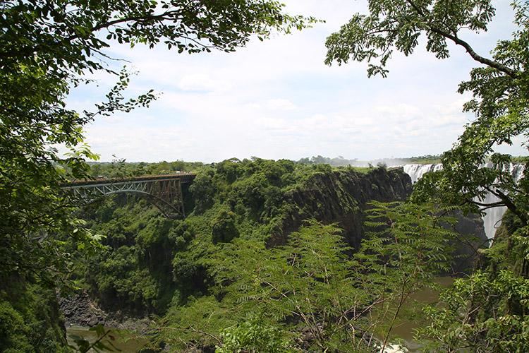 ザンビア ジンバブエ 国境 バンジージャンプ