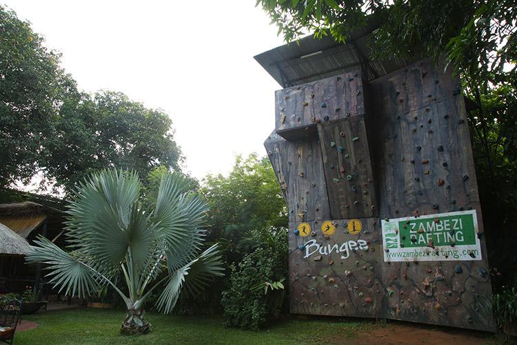 ザンビア リビングストン