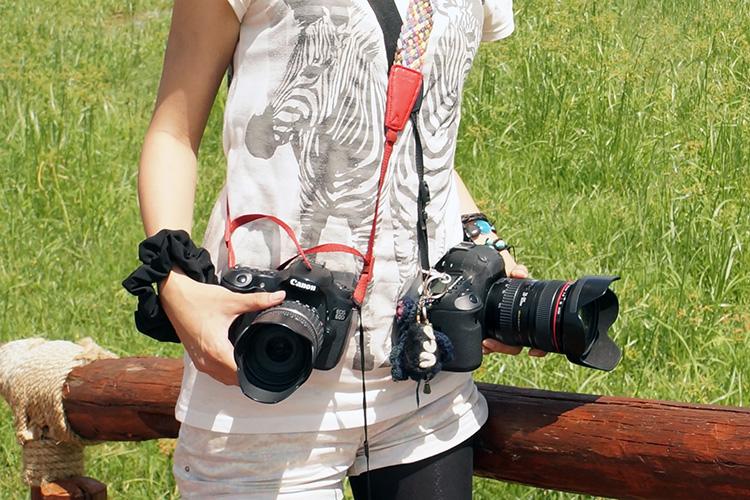 タンザニア サファリ カメラ