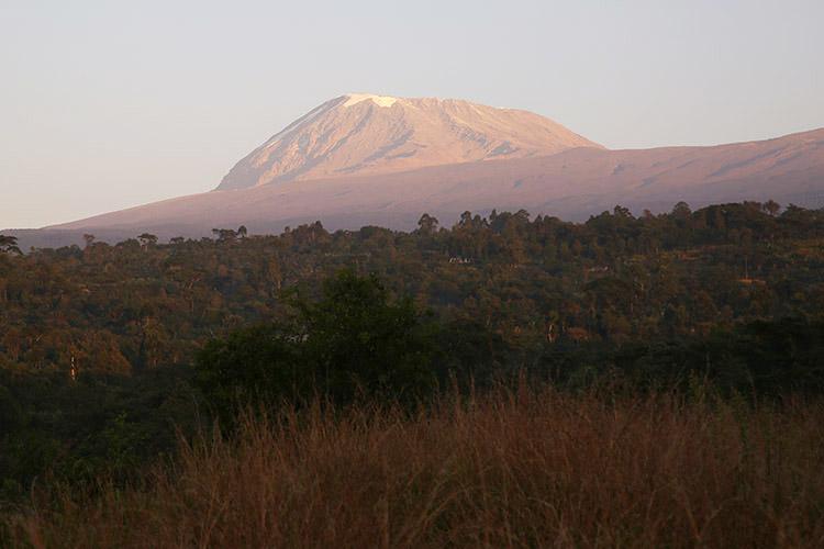 キリマンジャロ 登山 マラングルート