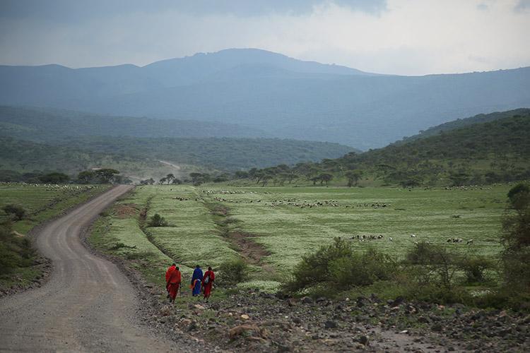 タンザニア サファリ マサイ族