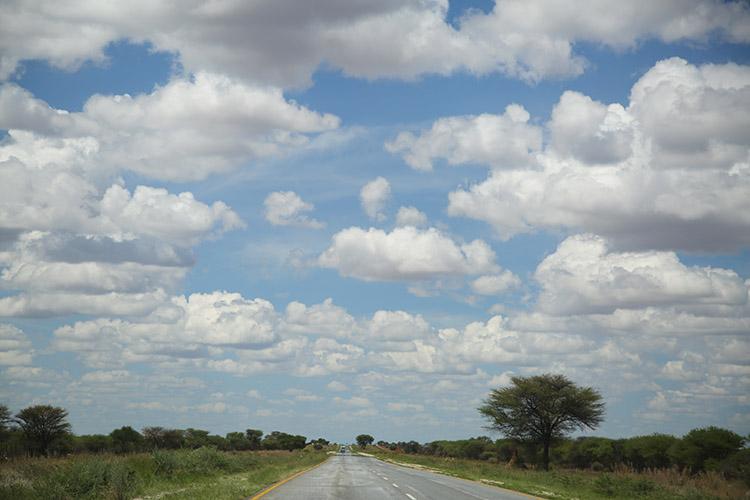 ナミビア レンタカー ドライブ