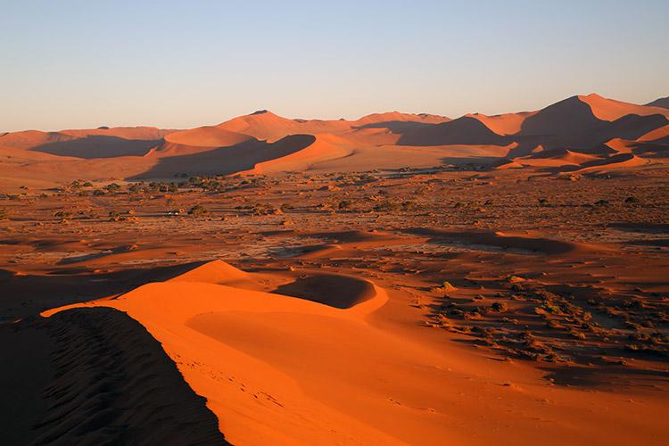 ナミブ砂漠の画像 p1_15