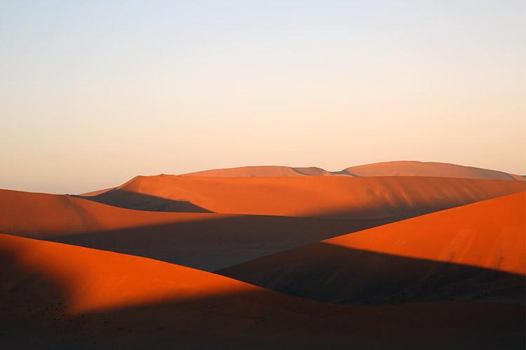 ナミブ砂漠の画像 p1_17