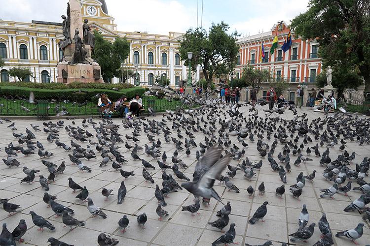 ラパス ムリリョ広場