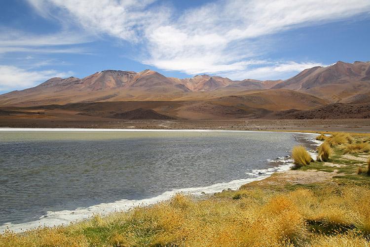 ラグナ ツアー 湖 ボリビア