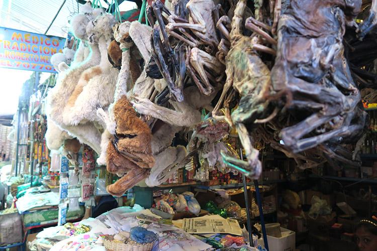 コチャバンバ 市場 メルカド カンチャ