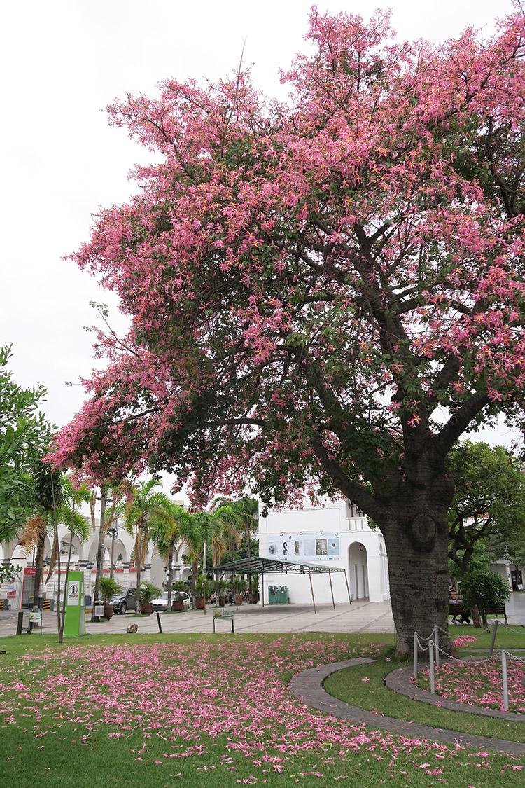 サンタクルス ボリビア