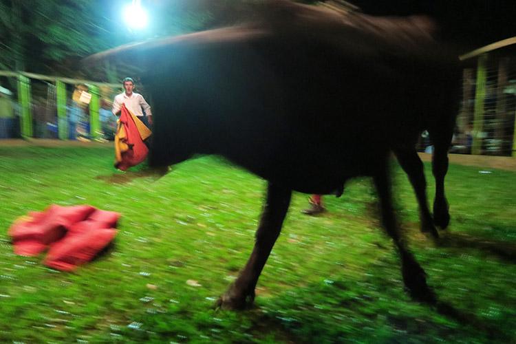 民宿小林 パラグアイ 闘牛