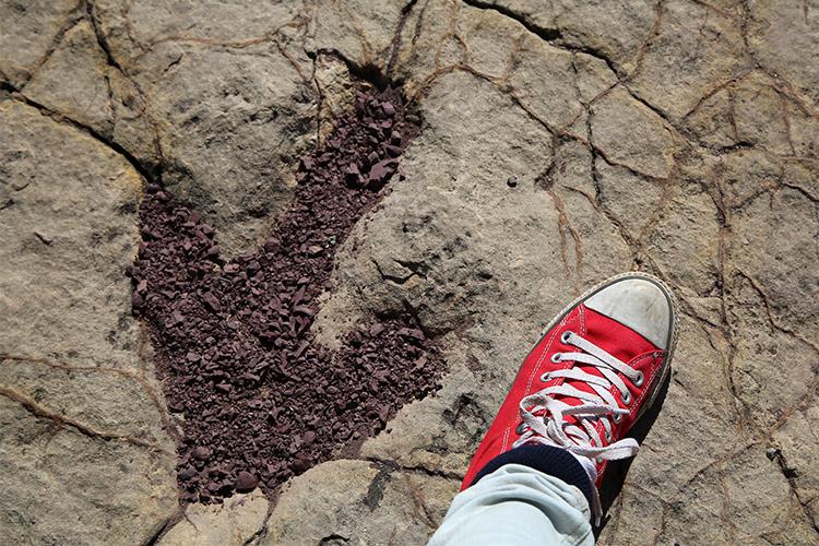 トロトロ ボリビア 恐竜の足跡