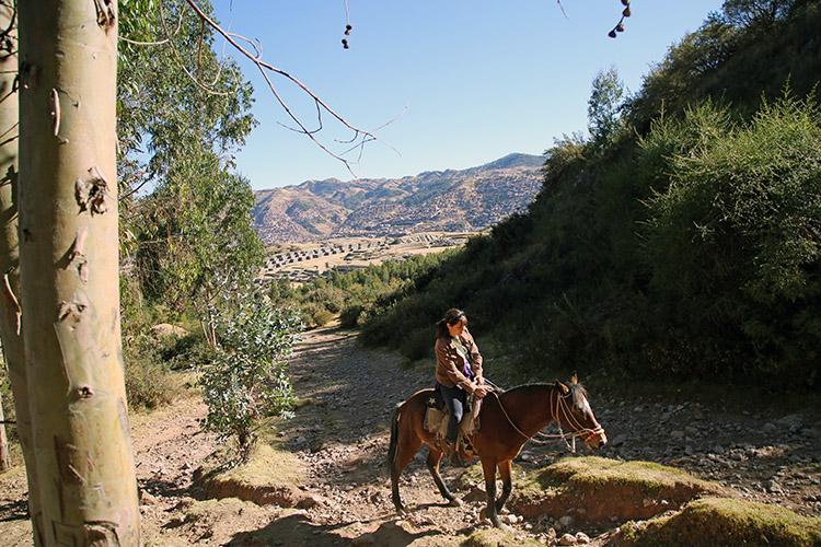 クスコ 乗馬 ホーストレキング ホースライディング