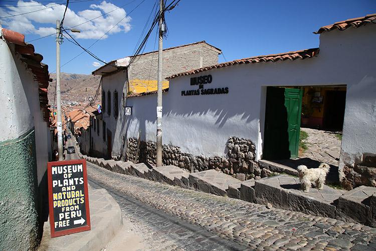 クスコ 占い タロット ペルー