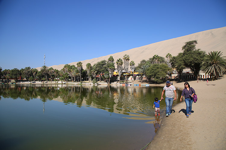 ワカチナ 砂漠 オアシス イカ ペルー