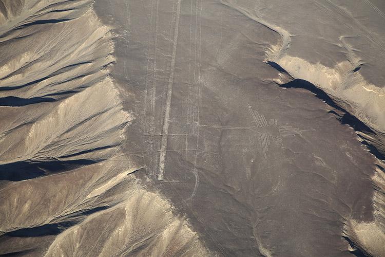 ナスカの地上絵 セスナ ツアー サル