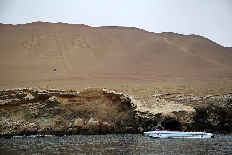 パラカス バジェスタス島 ツアー