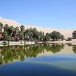 砂漠に佇むオアシスの街