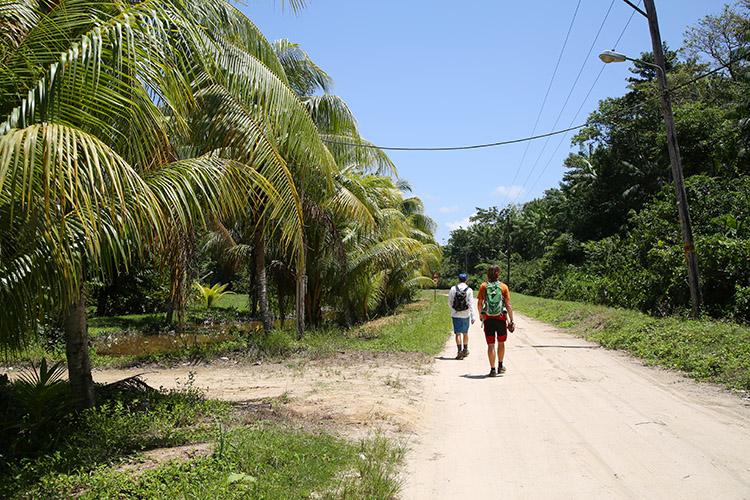 スリナム パラマリボ 観光