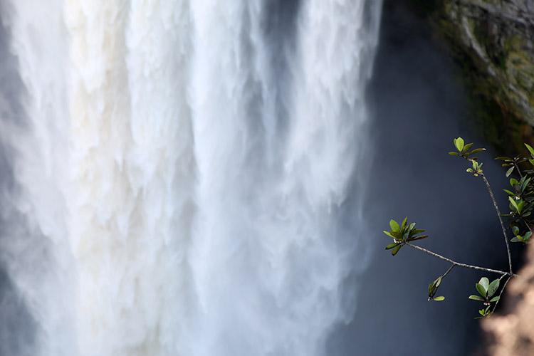 カイエトゥールの滝 ガイアナ ギアナ高地