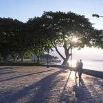 南米初の盗難事件勃発