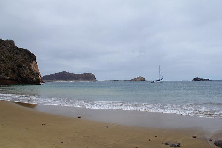 ガラパゴス諸島 サンクリストバル島 プンタピット punta pitt