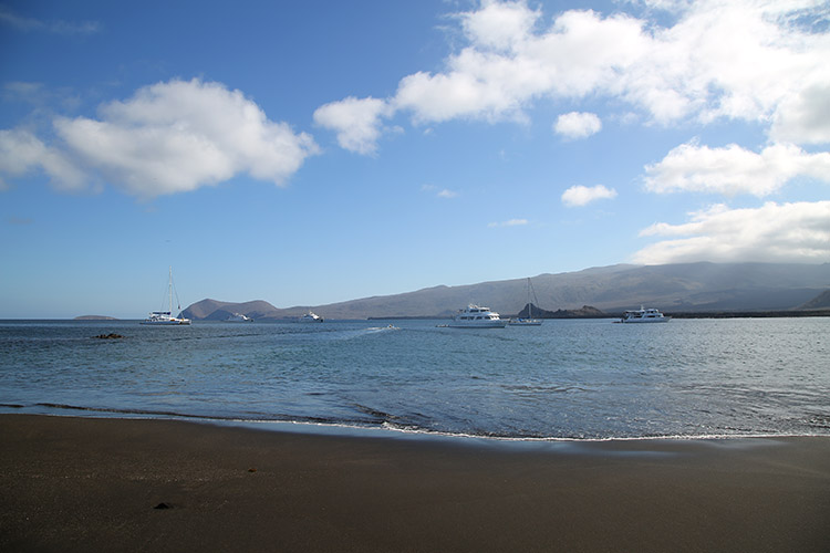 ガラパゴス諸島 ツアー サンティアゴ島 プエルトエガス