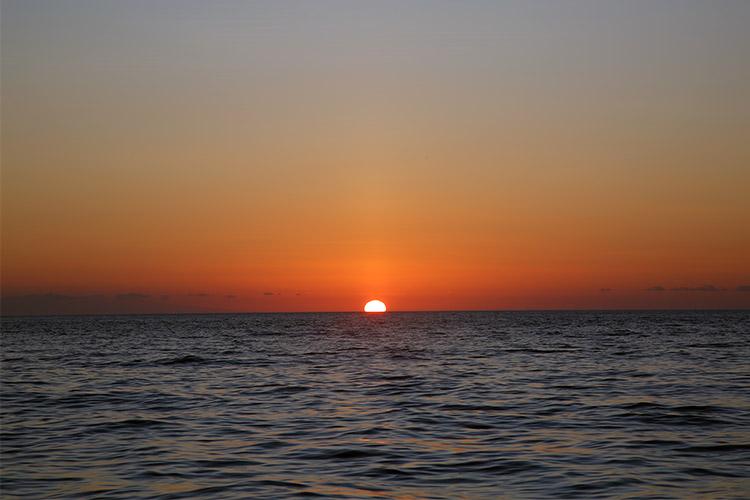 ガラパゴス諸島 バルトロメ島 ツアー