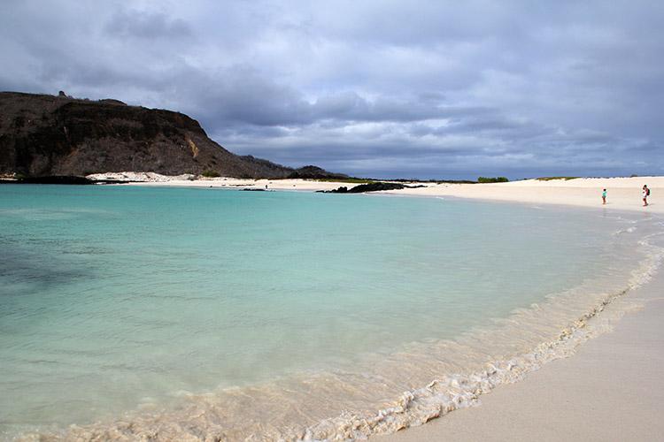 ガラパゴス諸島 セロ・ブルーホ Cerro Brujo アシカ