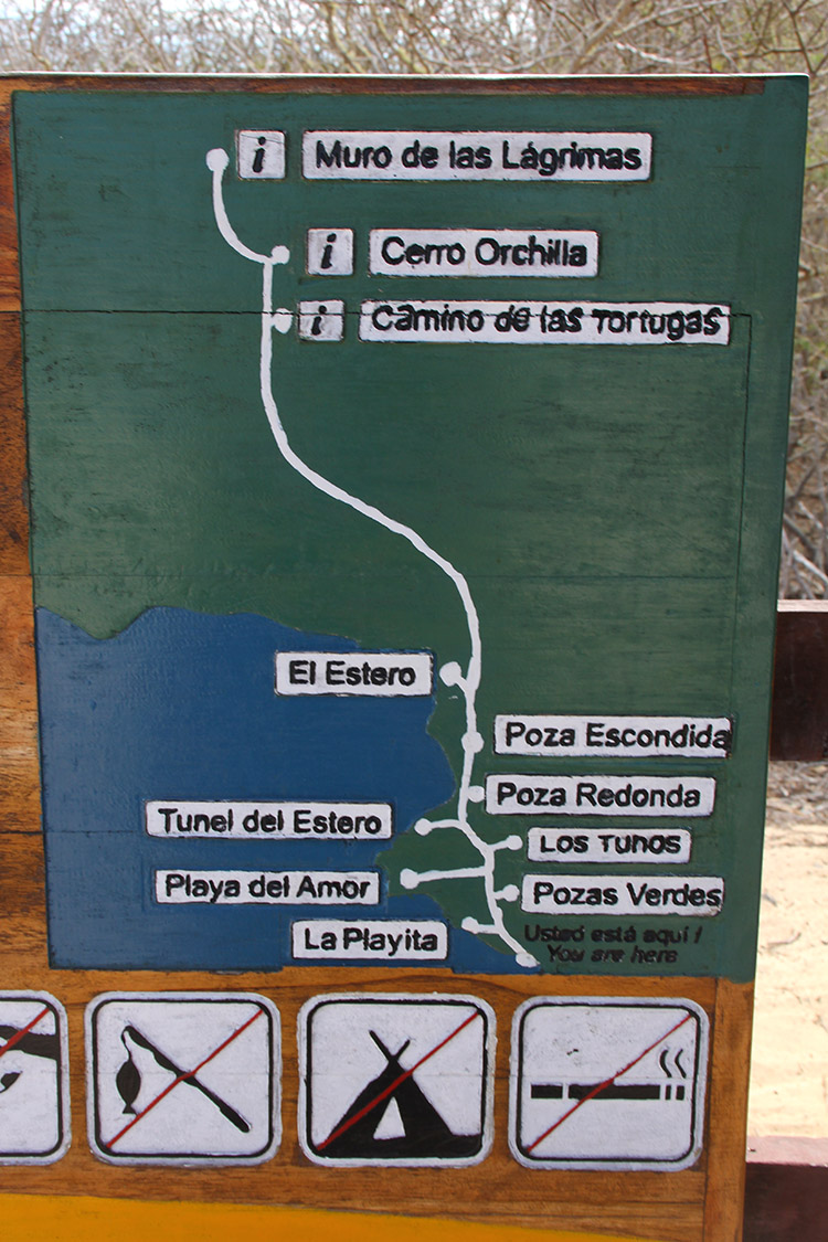 イザベラ島 ガラパゴス サイクリング