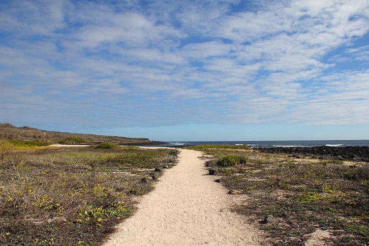 サン・クリストバル島 Las Loberias ラスロベリアス