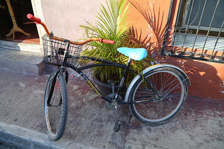 バヤドリード レンタル自転車 セノーテ