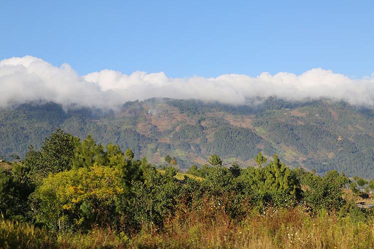 ネバフ イシル族 日曜市 グアテマラ
