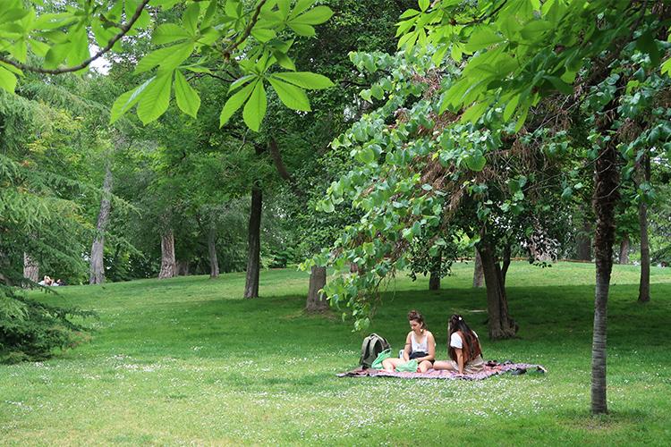マドリード 公園 スペイン