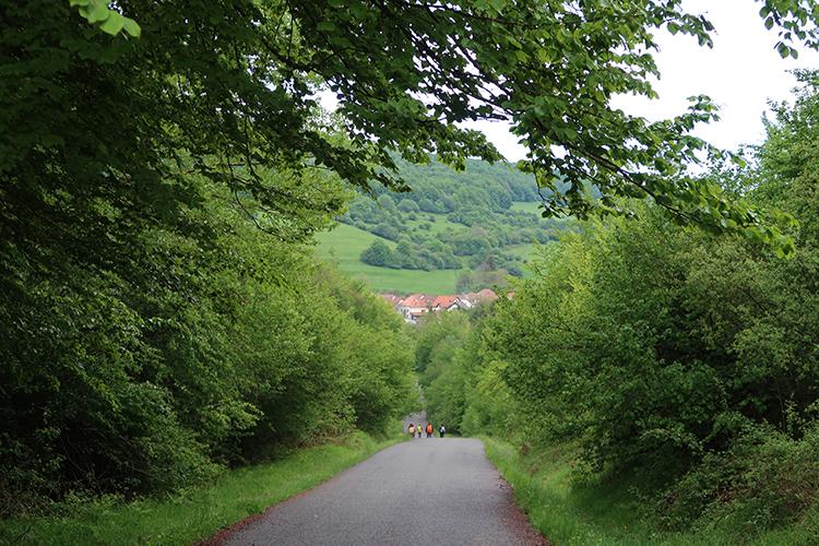 カミーノ フランスの道